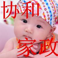 郑州协和家政服务公司诚信专业