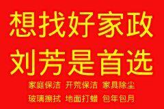 想找好家政  刘芳是首选