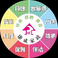益阳市康成家政服务有限公司